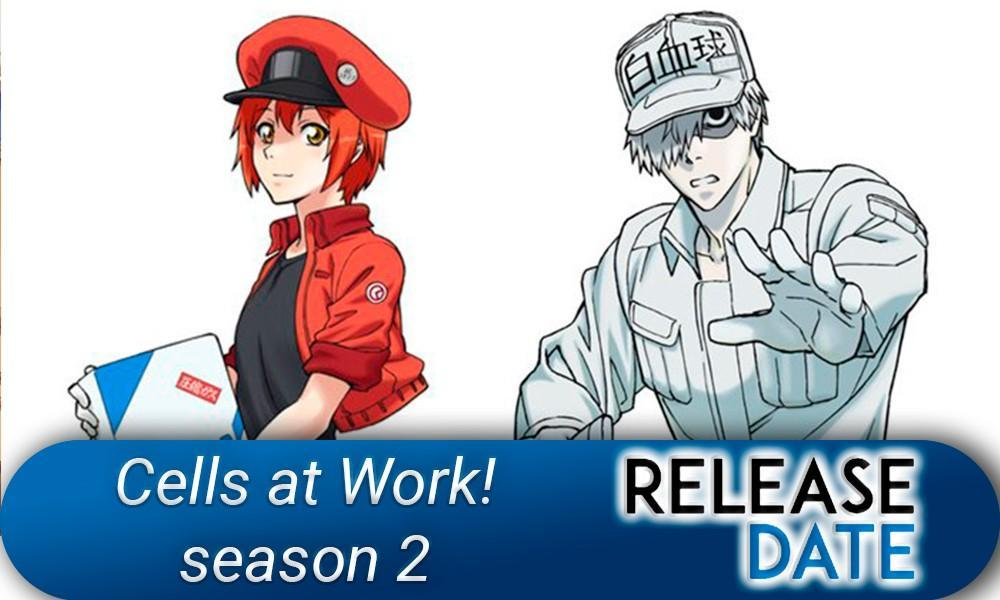 Hataraku Saibou/Cells at Work! Season 2